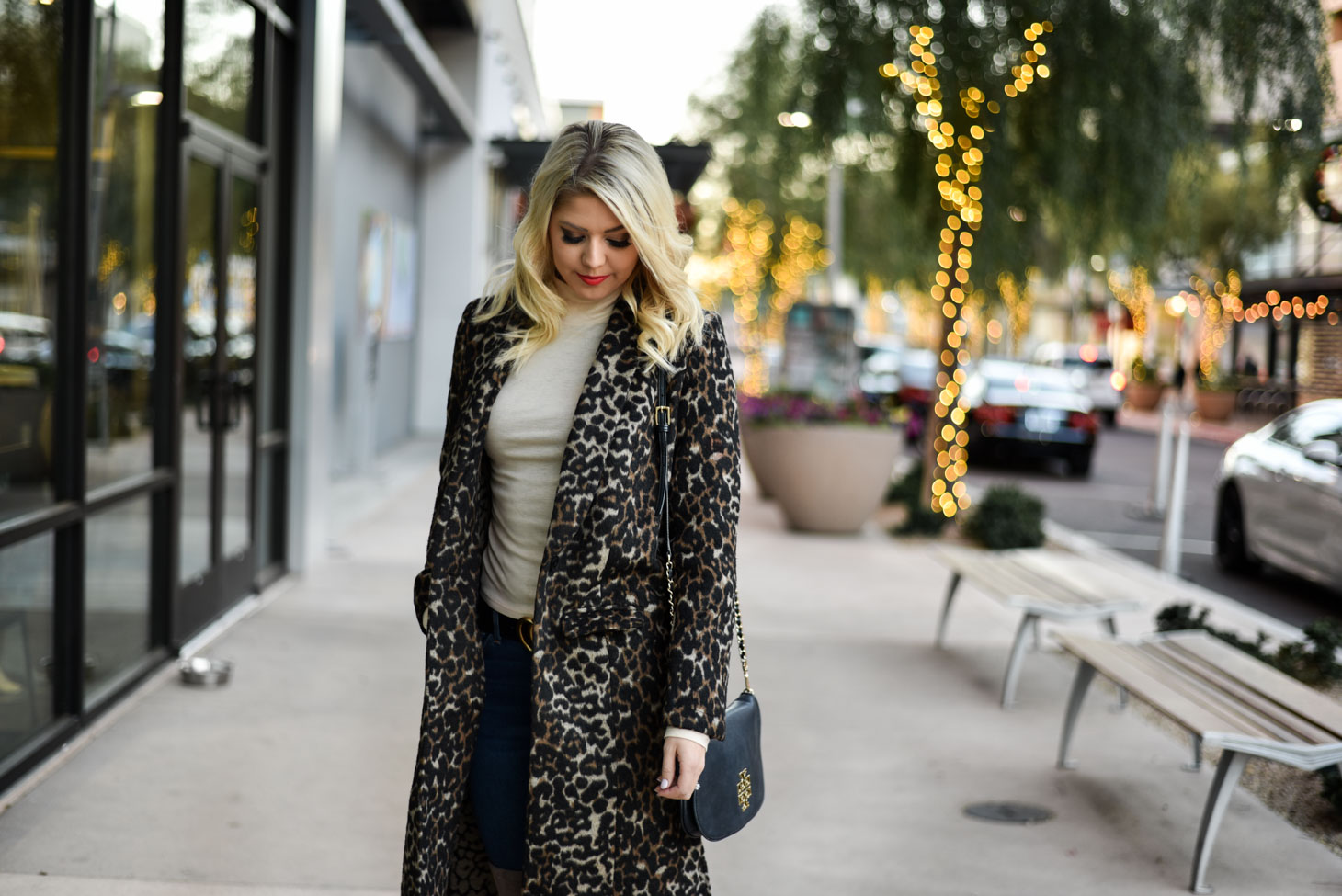 Leopard Print Coat graphic