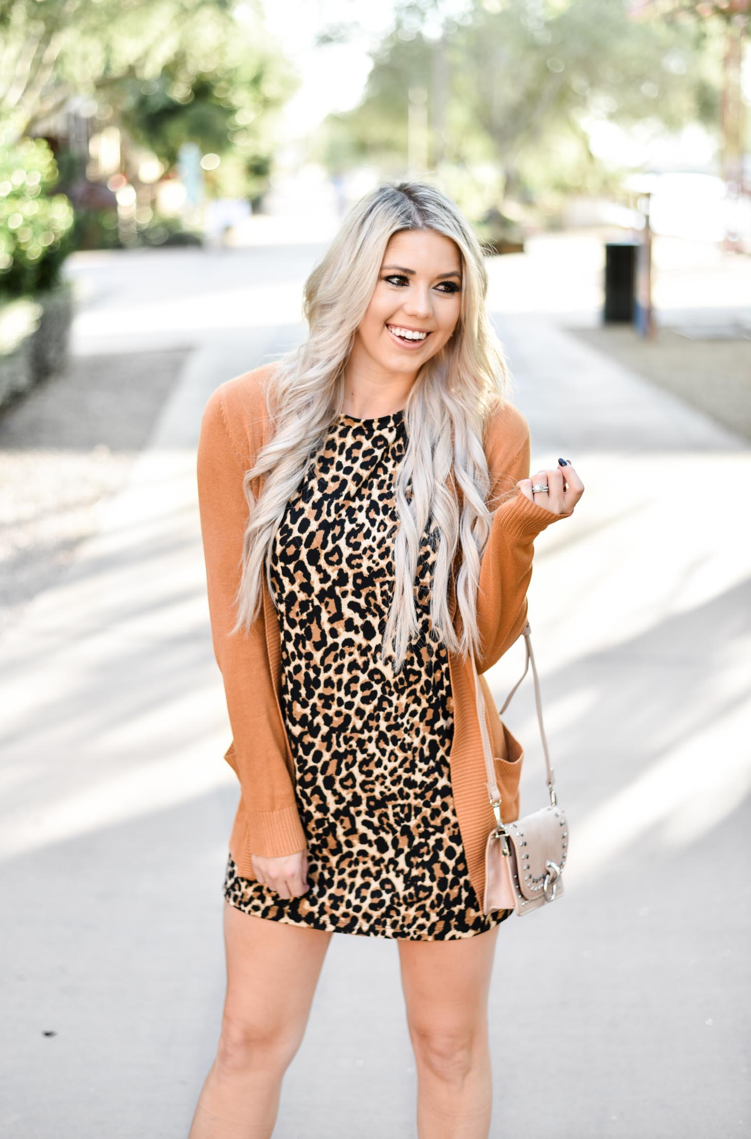 Erin Elizabeth of Wink and a Twirl shares the perfect leopard dress and cardigan from Pink Lily Boutique